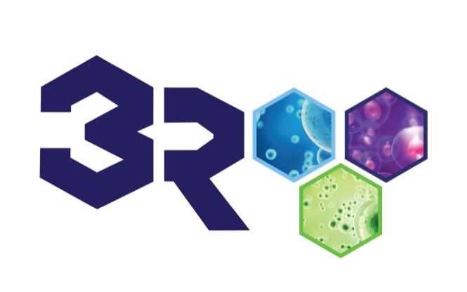 3R Regenerative Repair & Relief.png